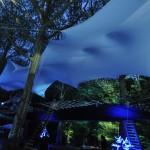 Treetop Screenings - Paris